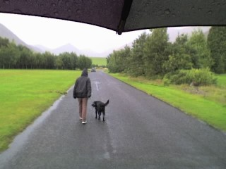 Wife and dog in the rain.