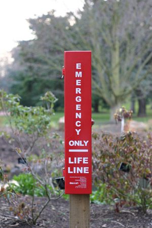 Photo of lifeline